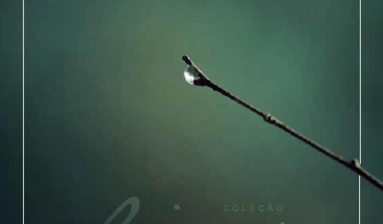 CATÁLOGO – CONHEÇA O PORTIFÓLIO DE AMBIENTES
