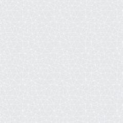 Fraktal Branco