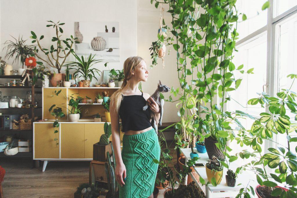 urban jungle - plantas no lar