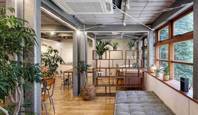 Você sabe o que é o plantscaping e como usá-lo na arquitetura?