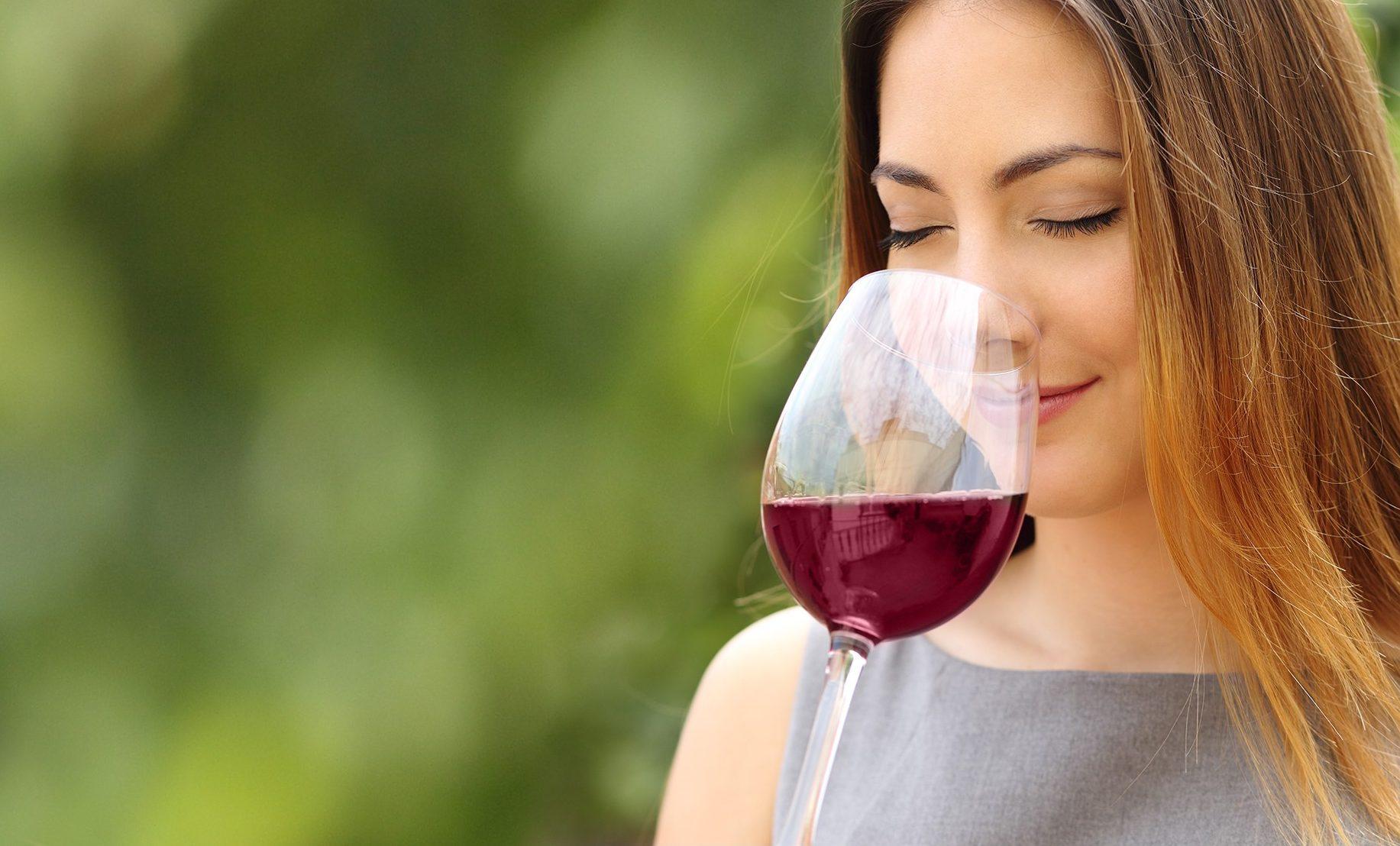 amante de vinho